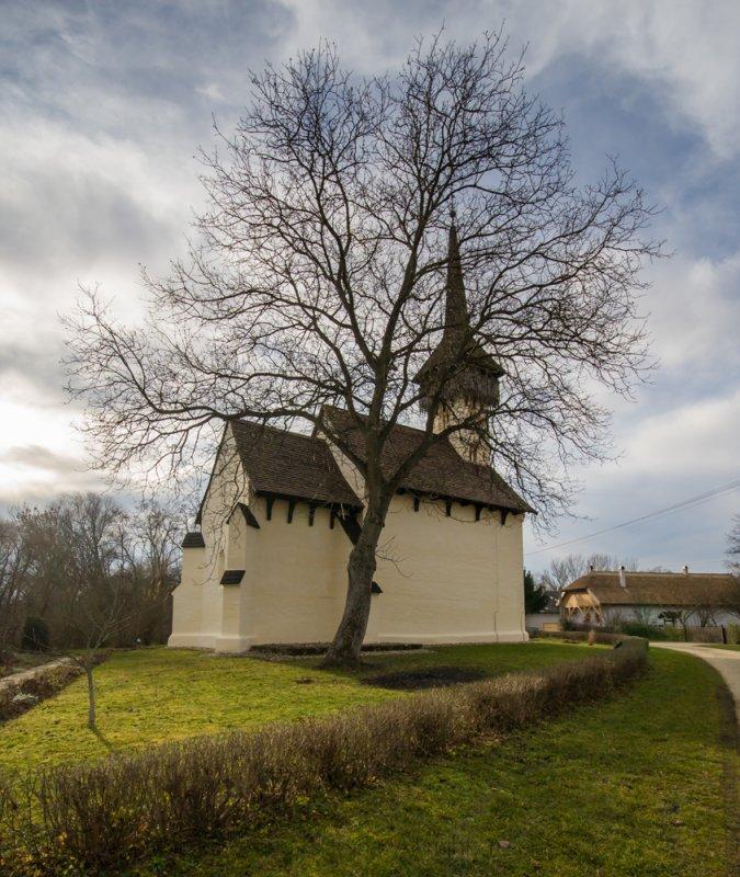 The church's tree